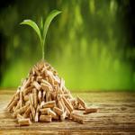 zoom-sur-la-production-et-la-consommation-de-pellets-en-europe-et-dans-le-monde-image