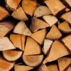 Les chaudières bois ont le vent en poupe