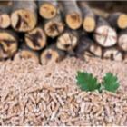composition des pellets