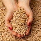 conservation du pellet