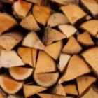 evolution prix du bois