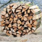 un m³ de bois
