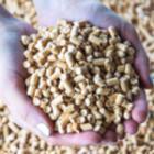 La consommation de granulés de bois en Europe