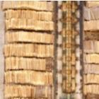 bûches de bois densifié