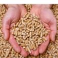 granules-de-bois-des-debouches-importants-en-chaufferie-collective-et-industrielle-image